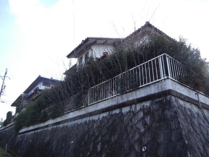 岐阜県可児市の庭木伐採