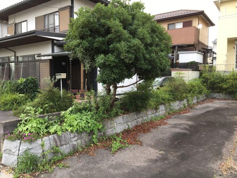 アスファルト舗装、樹木撤去お見積り|岐阜県岐阜市