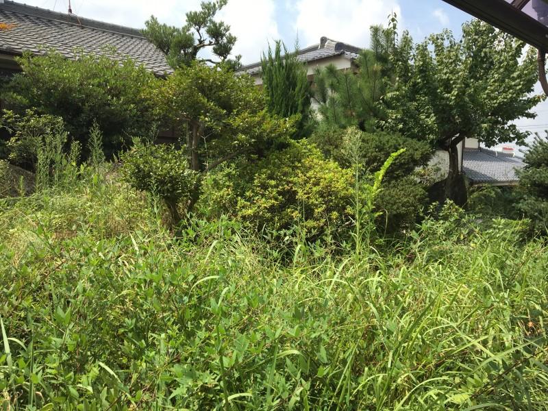 名古屋市緑区の庭木伐採工事お見積り
