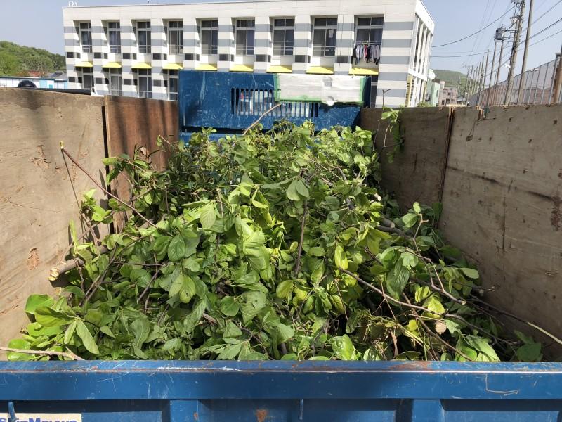 岐阜市|庭木廃材積替え