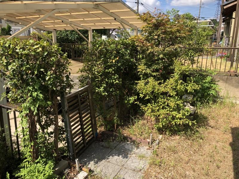 お庭の解体 庭木伐採