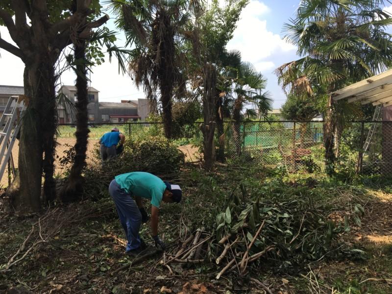 岐阜市の庭木伐採工事【車が入れないため、手作業で伐採と積み込み】